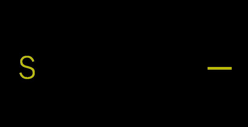Logo Bretagne Sécurité Services